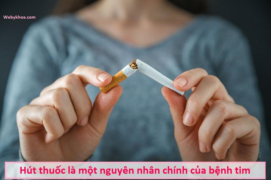 Hút thuốc là một nguyên nhân chính của bệnh tim