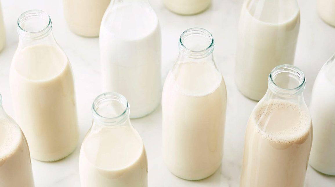 sữa không đường