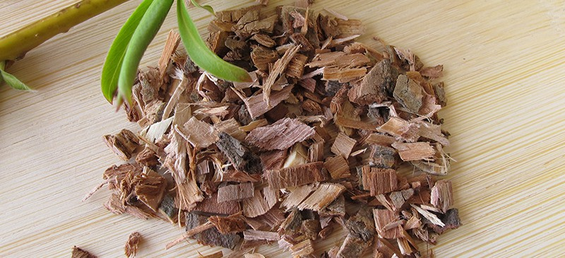 Vỏ cây liễu - thảo mộc