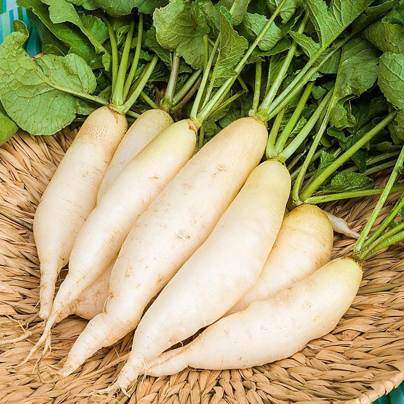 củ cải là loại rau củ tốt nhất cho sức khỏe