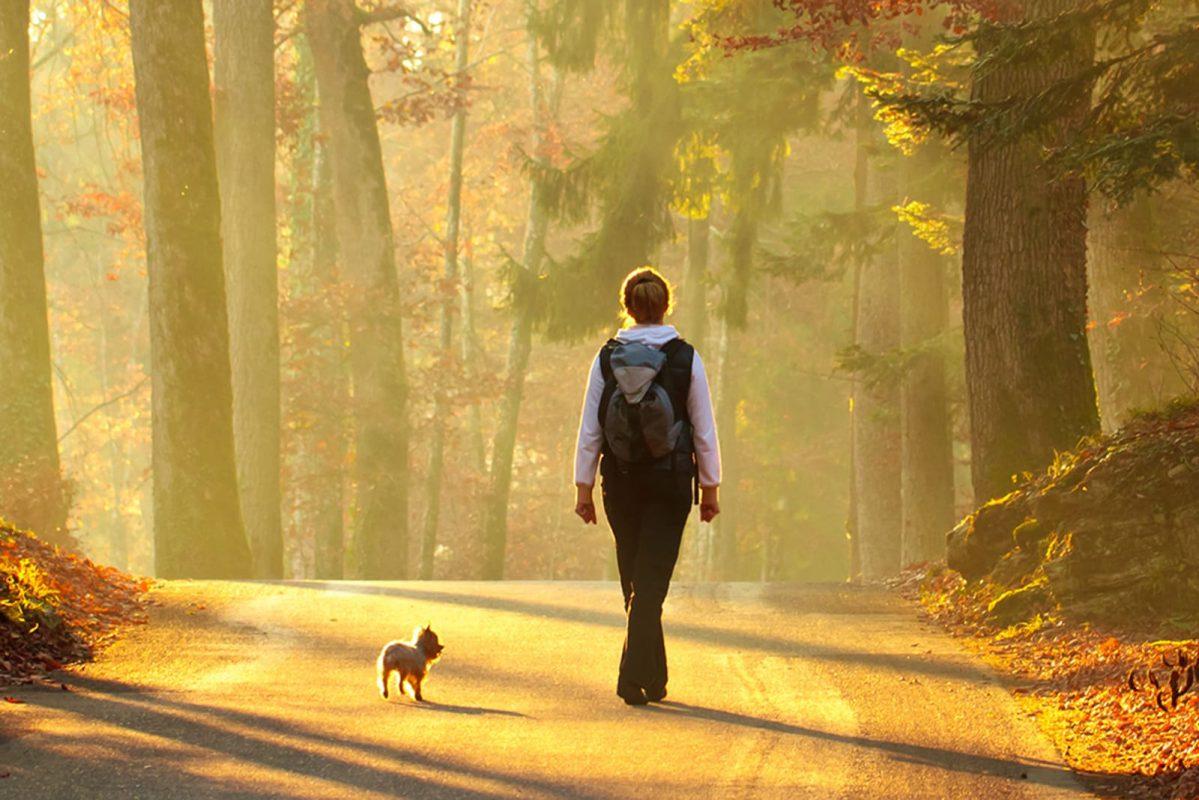 Dành thời gian đi dạo ở ngoài trời là liều thuốc tốt cho sự lo lắng